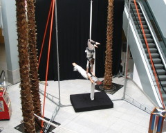 Free Standing Trapeze Rig